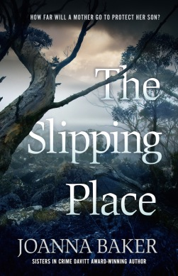 Slipping Place_cover final 1000 wide