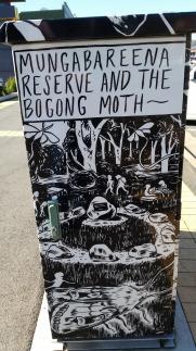 Wiradjuri mungab bogong moth